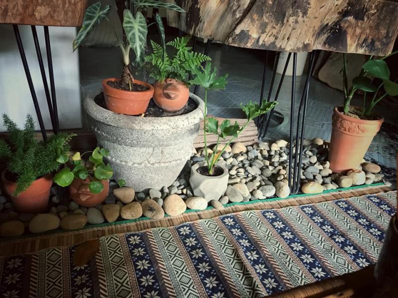 Lười garden