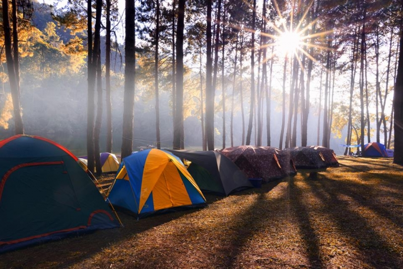 Thuê lều của Lượn Store để đi dã ngoại ngoài trời