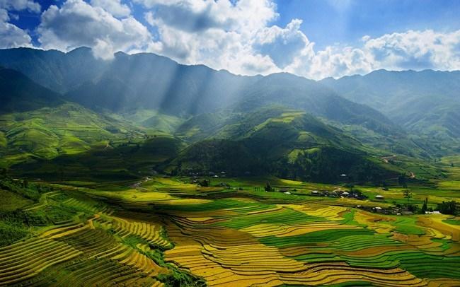 Vẻ đẹp thanh bình mà hoang sơ giữa thung lũng Mai Châu mùa lúa chín luôn để lại trong lòng du khách những xúc cảm mới lạ, mời gọi bước chân du khách trở lại vùng rừng núi miền Tây Bắc.