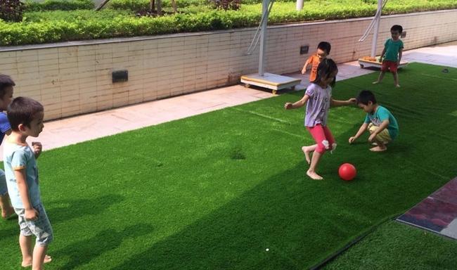 Sân bóng cỏ nhân tạo