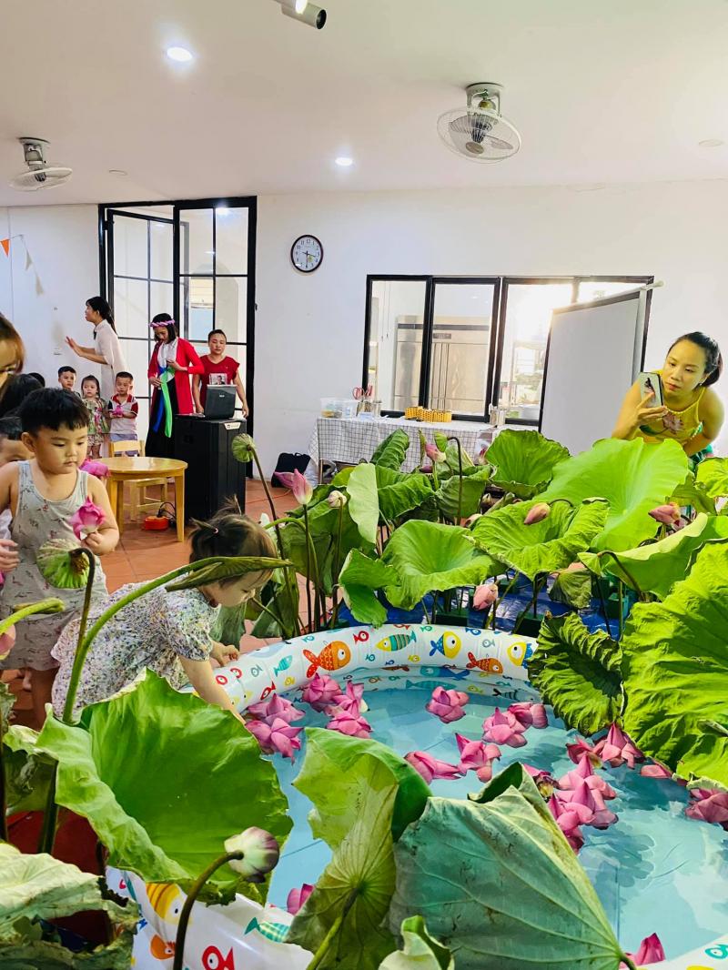 Mầm non Ong Thông Minh - Smartbees Việt Trì