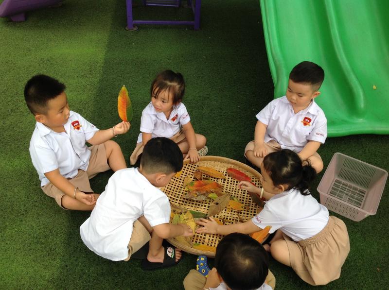 Trường có cơ sở vật chất hiện đại, khang trang, nhiều cây xanh, là môi trường học tập và vui chơi tuyệt vời cho các bé.