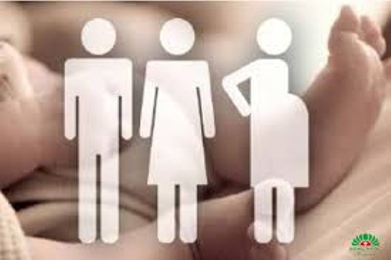 Minh họa mang thai hộ