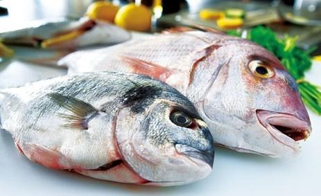 Mật cá tươi có thể gây tử vong