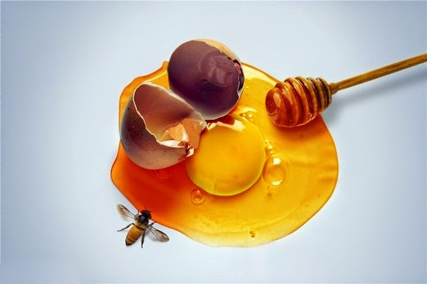 Trong lòng trắng trứng gà chứa nhiều protein giúp da khỏe và săn chắc hơn, đồng thời mật ong sẽ đóng vai trò giúp nuôi dưỡng và cấu tạo lại thành tế bào trên bề mặt da giúp cho những vết sẹo thâm nhanh chóng biến mất.