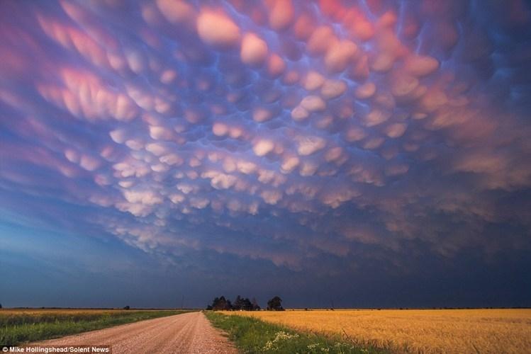 Mây Mamatus