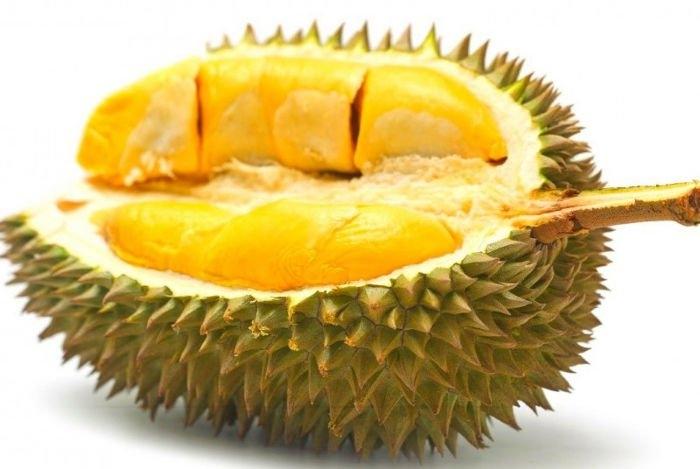 Sầu riêng là loại trái cây đặc biệt yêu thích của người dân Malaysia