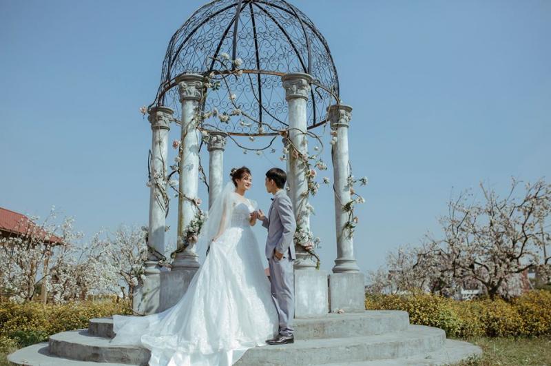 Meli Studio - Ảnh cưới Kim Động