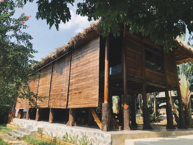 Mely Farm, Ba Vì