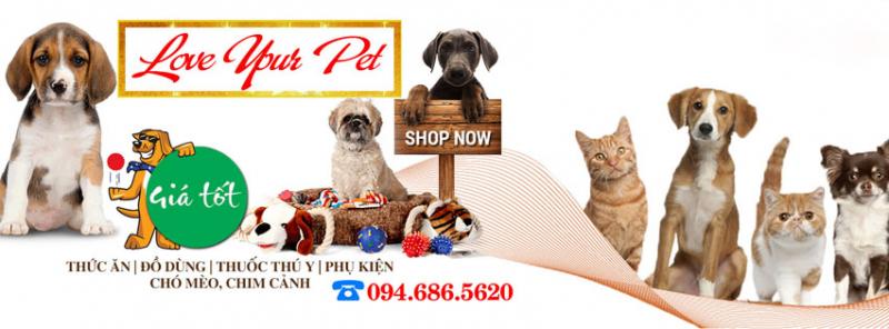 Mèo Cún Pet Shop
