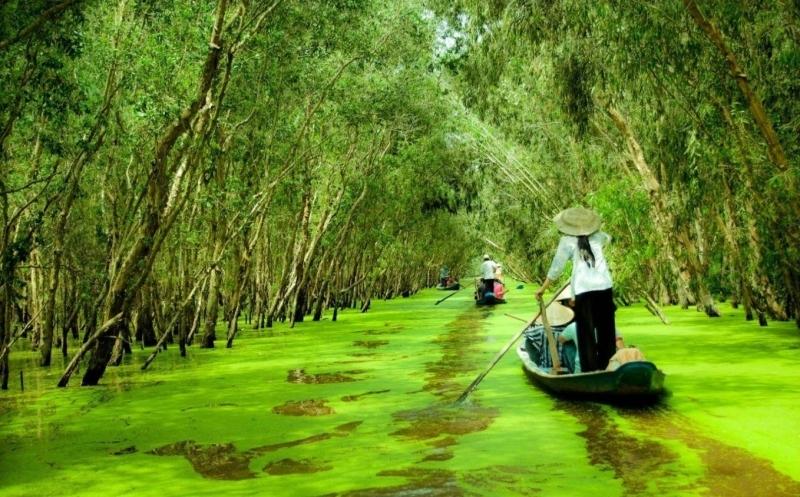 Rừng Tràm Sư mùa nước nổi