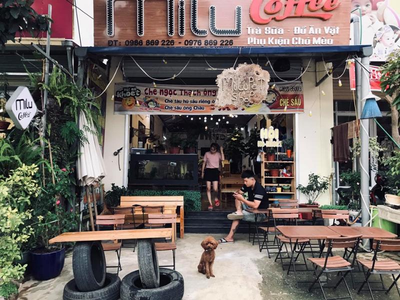 Milu Coffee nổi tiếng là thiên đường ẩm thực đồ uống tại Mộc Châu.