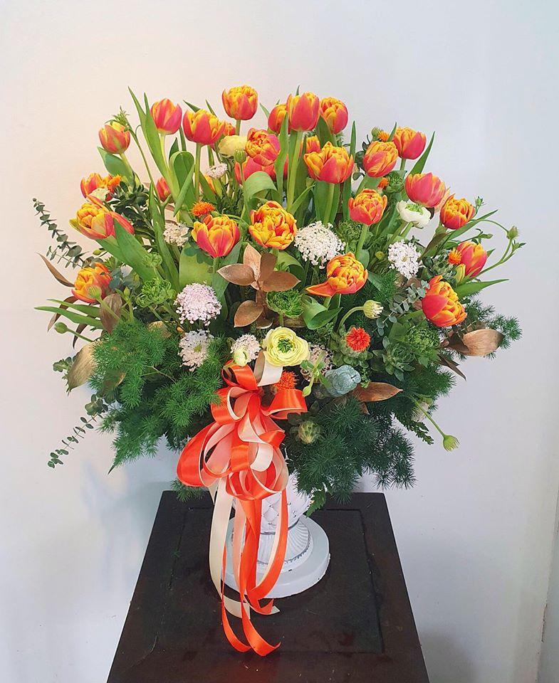 Tulip - chỉ có thể là yêu