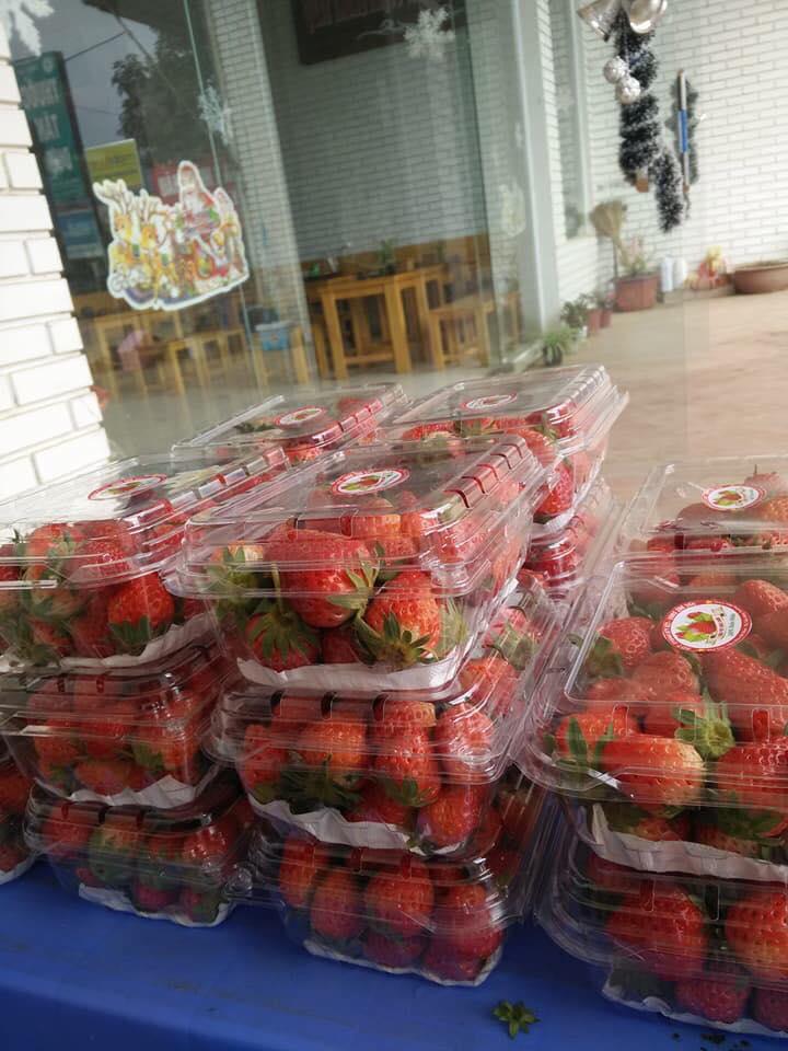 Mộc Châu Farm