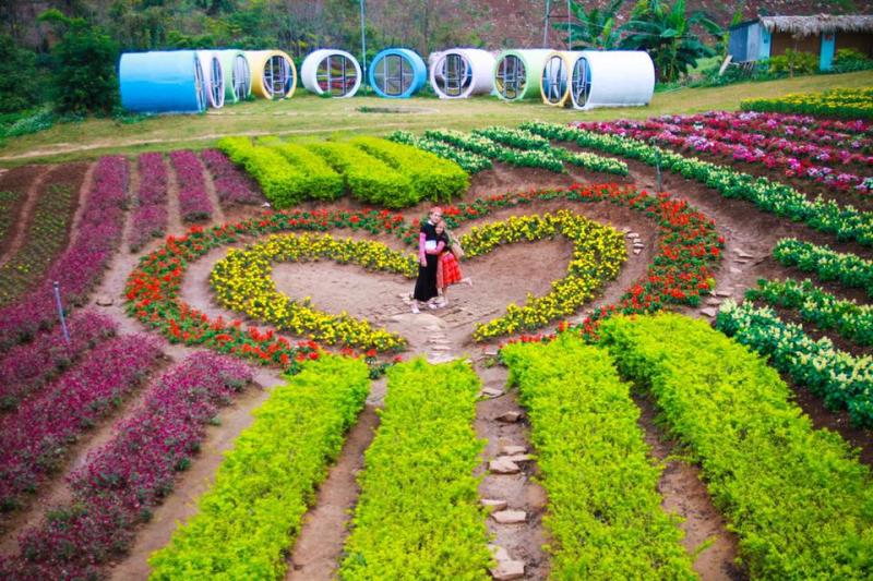 Du lịch Tết Mộc Châu, Sơn La