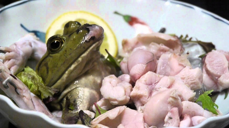 Sashimi ếch (ếch sống) – Nhật Bản
