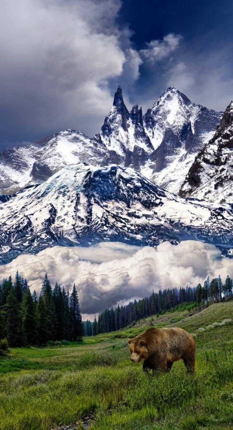 Dãy Montana bị bao phủ bởi tuyết trắng