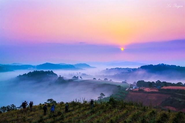 Đà Lạt dịu dàng, huyền ảo trong làn sương sớm