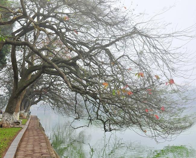 Một ngày mùa đông có mưa phùn.