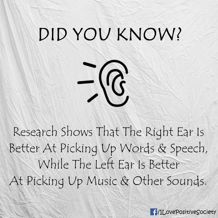 Mỗi một bên tai có khả năng tiếp nhận âm thanh khác nhau