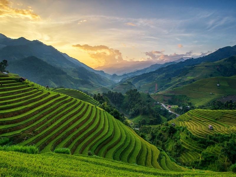 Mù Cang Chải: Việt Nam