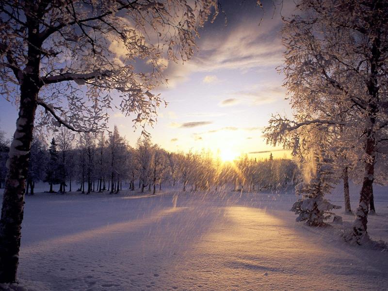 mùa đông lạnh giá, nhưng có chăng chính những giá lạnh ấy đã làm nên cái ấm nóng của tình người.