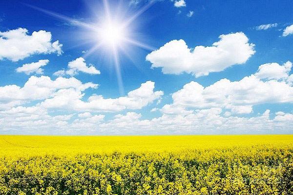 bầu trời trong xanh mùa hè với những tia nắng vàng ấm áp