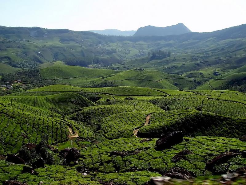 Munnar nằm tại vùng đất của chúa ở Kerala
