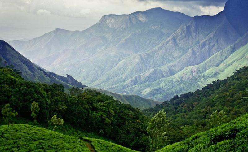 Thiên nhiên đã ưu ái ban tặng cho Munnar một khung cảnh rất đỗi thanh bình và yên tĩnh