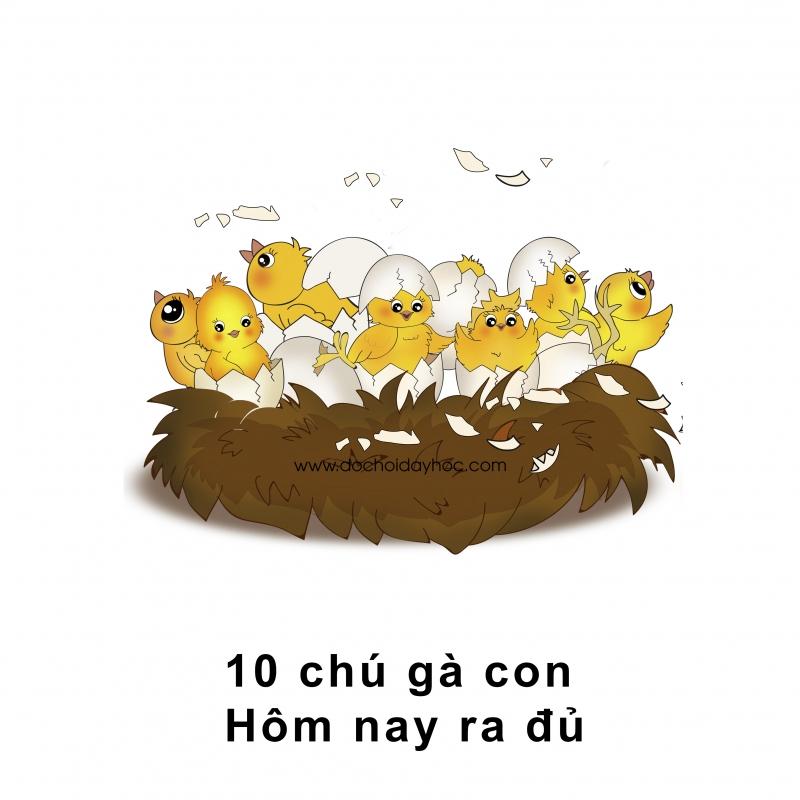 Mười chú gà con, hôm nay ra đủ