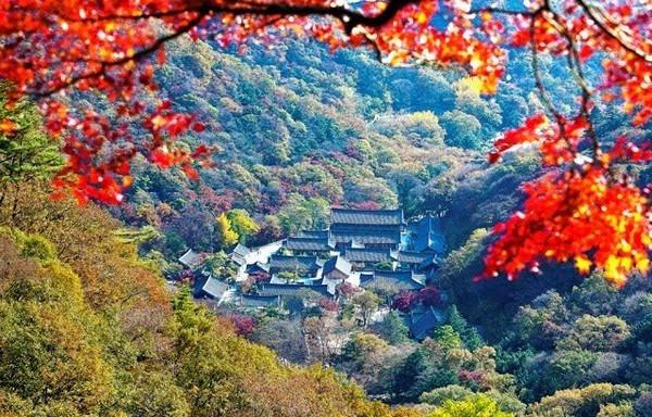 Công viên đặc biệt thu hút khách du lịch vào tháng, thời điểm mà khung cảnh lá mùa thu đẹp đến mê hoặc