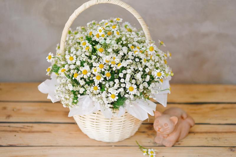 Nam An Flowers