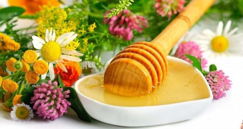 Sữa ong chúa nguyên chất tại Natu Food