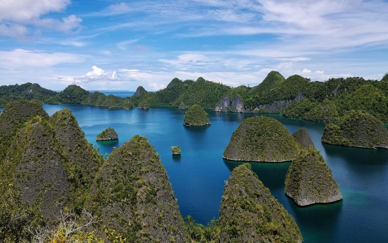 Đảo New Guinea