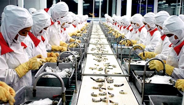 Ngành công nghệ thực phẩm phục vụ trong nước và xuất khẩu