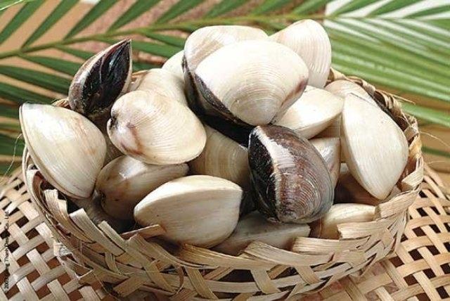 ngao, sò có chứa các nguyên tố vi lượng giúp thúc đẩy quá trình phân giải cholesterol và làm giảm mỡ máu.