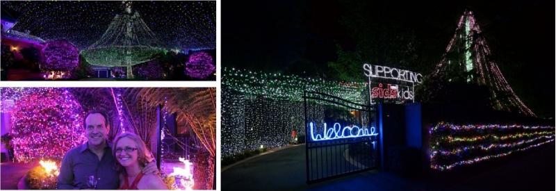 Ngôi nhà có nhiều đèn Giáng sinh nhất