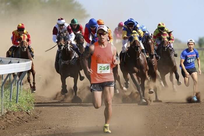 Cuộc thi thể hiện sức dẻo dai giữa người và ngựa