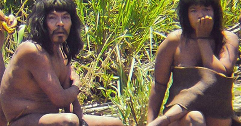 Người Mashco-Piro