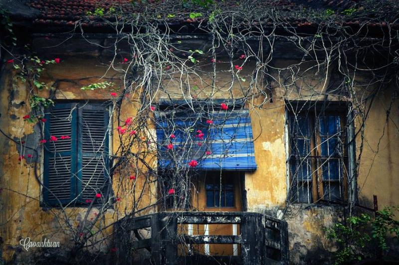 Nhà cổ Hà Nội