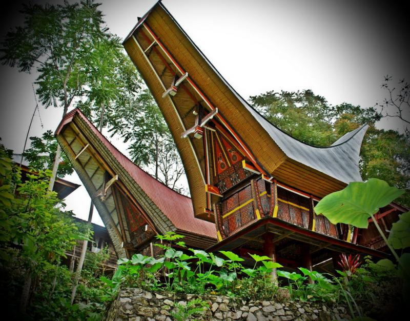 Những chiếc nhà sàn hình thuyền của họ được gọi là tongkonan
