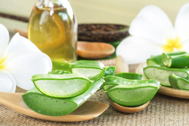 Nha đam và dầu dừa