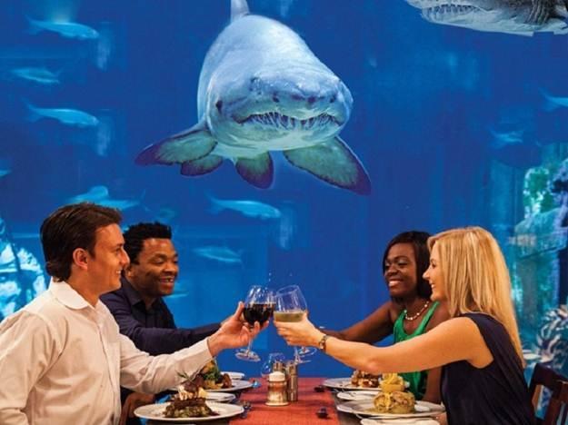 Nhà hàng dưới biển Ithaa ở Maldives