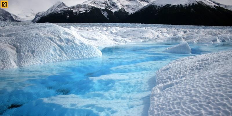 Sông băng Fox, New Zealand