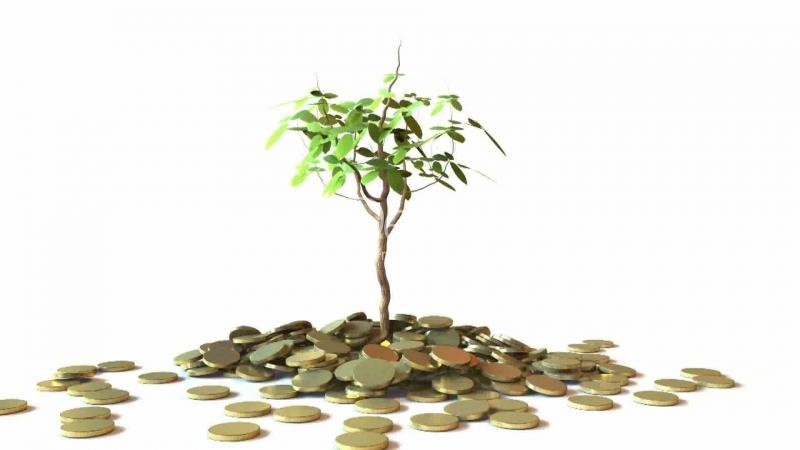 Nhận biết giá trị của đồng tiền.