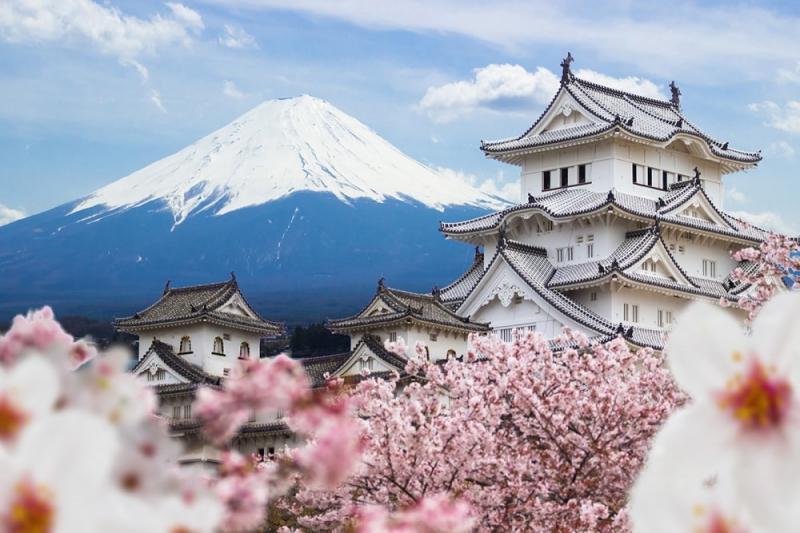 Nhật Bản (31%)