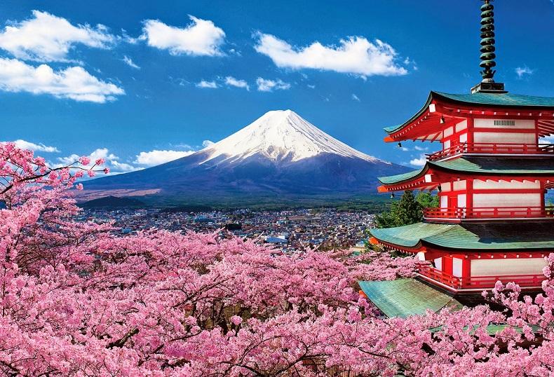 Nhật Bản đang tích cực mua vàng để sẵn sàng đối phó với các rủi ro