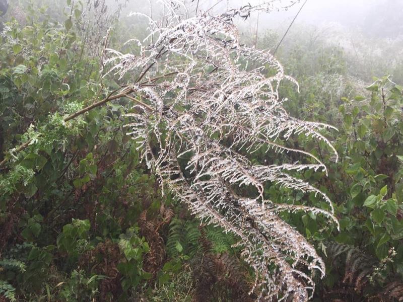 Tuyết trên Nhìu Cô San mùa đông