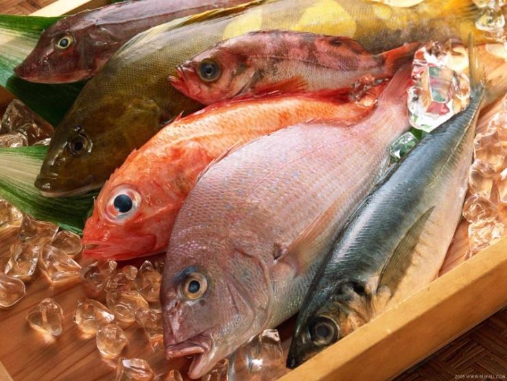 Cá chứa nhiều omega - 3