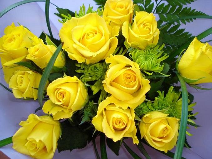 Những Bông Hồng Vàng Tặng Em
